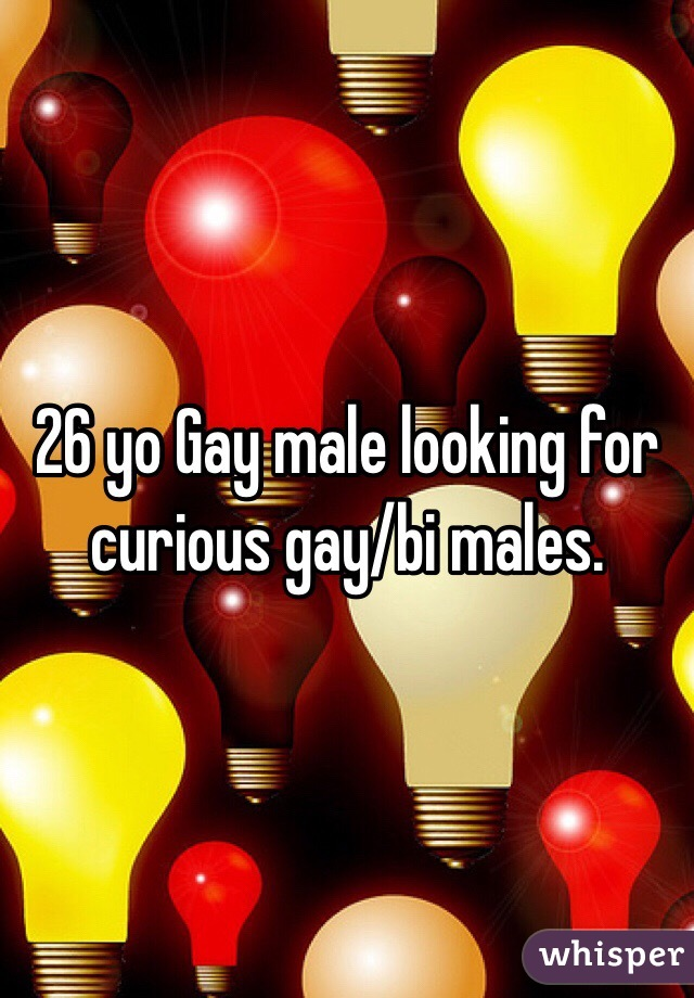 26 yo Gay male looking for curious gay/bi males.