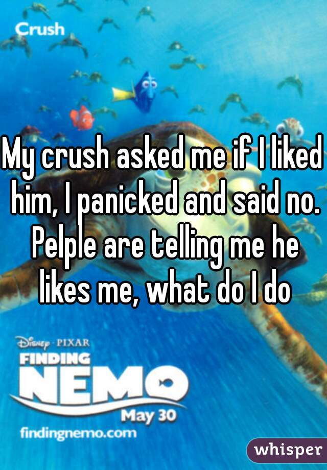 My crush asked me if I liked him, I panicked and said no. Pelple are telling me he likes me, what do I do