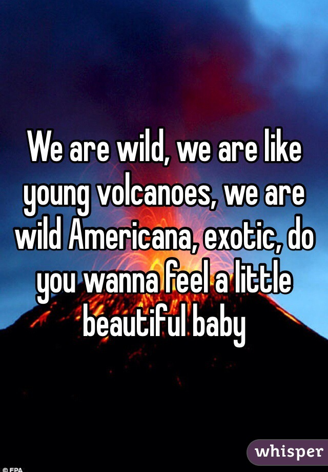 We are wild, we are like young volcanoes, we are wild Americana, exotic, do you wanna feel a little beautiful baby