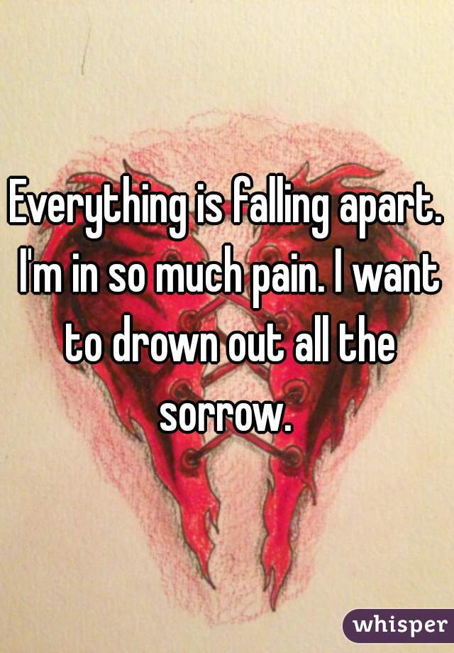 Everything is falling apart. I'm in so much pain. I want to drown out all the sorrow.