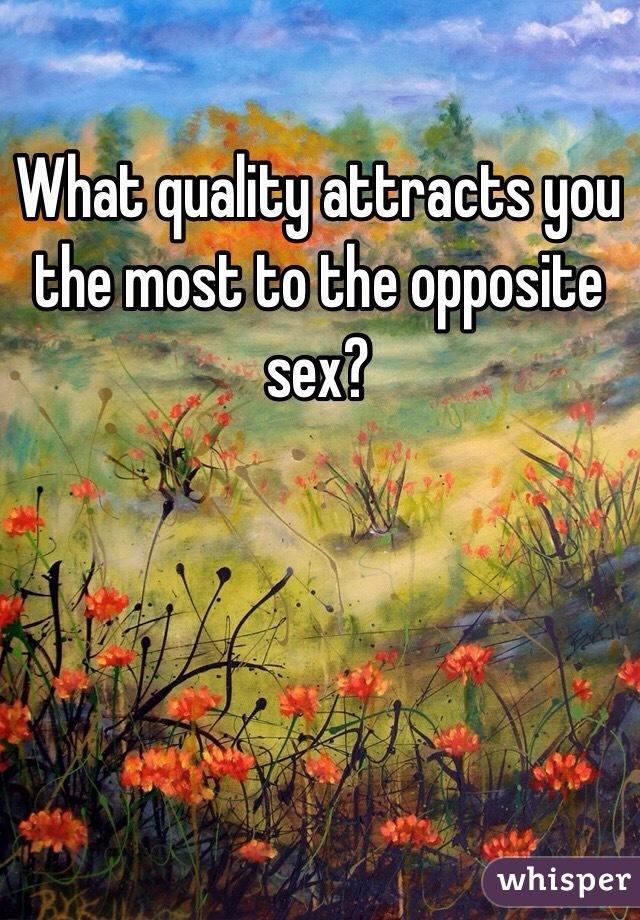 What quality attracts you the most to the opposite sex?