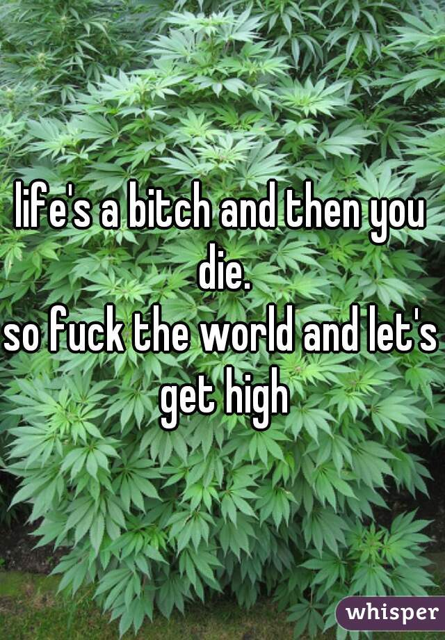 life's a bitch and then you die. so fuck the world and let's get high