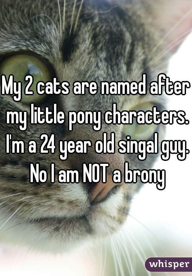My 2 cats are named after my little pony characters. I'm a 24 year old singal guy. No I am NOT a brony