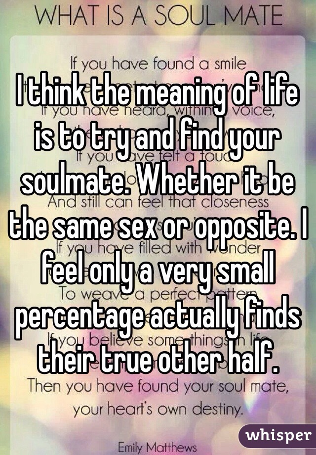 I think the meaning of life is to try and find your soulmate