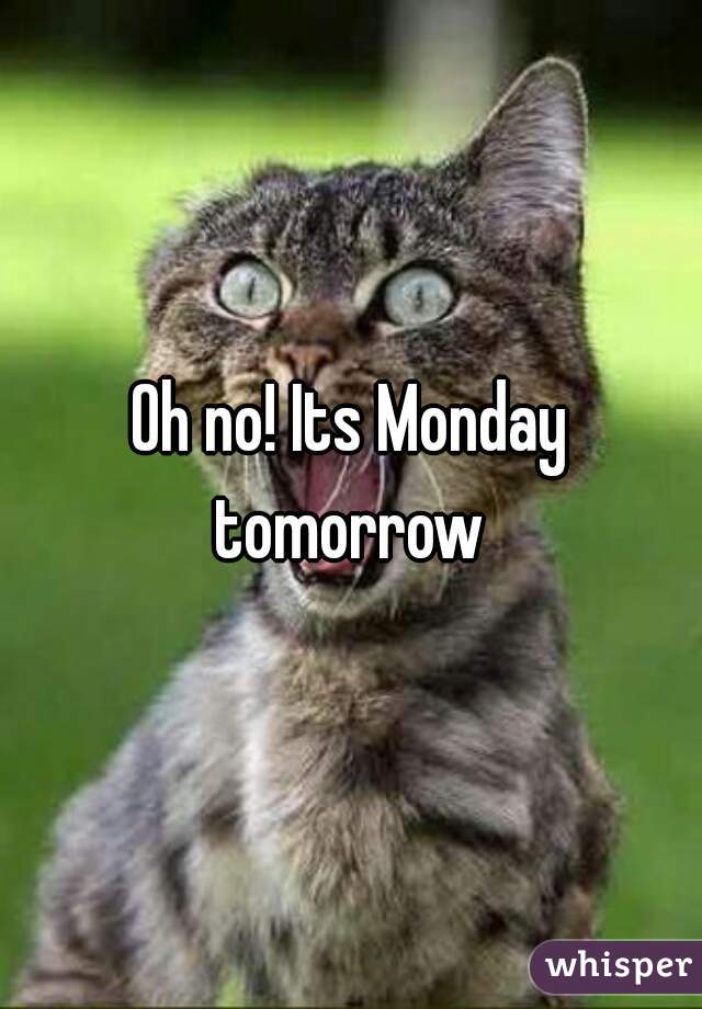 Oh no its monday tomorrow its monday tomorrow thecheapjerseys Images