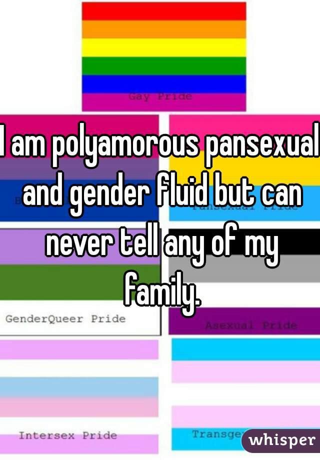 What is a genderfluid pansexual