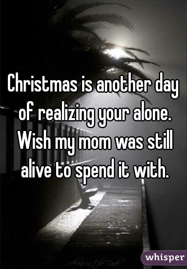 Christmas is another day of realizing your alone. Wish my mom was ...