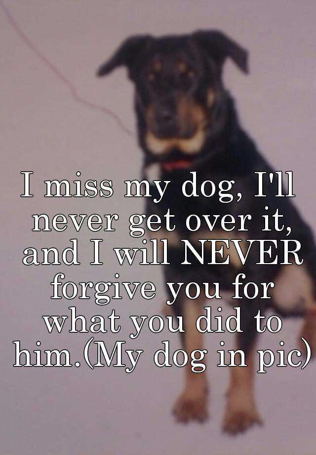 i ll never get over him