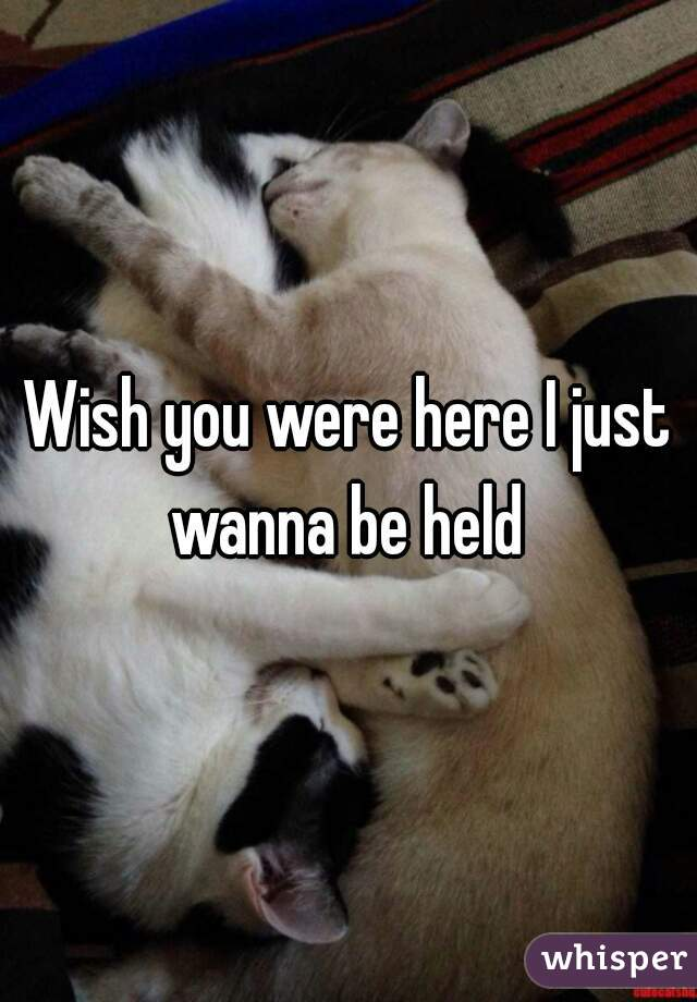 Wish you were here I just wanna be held