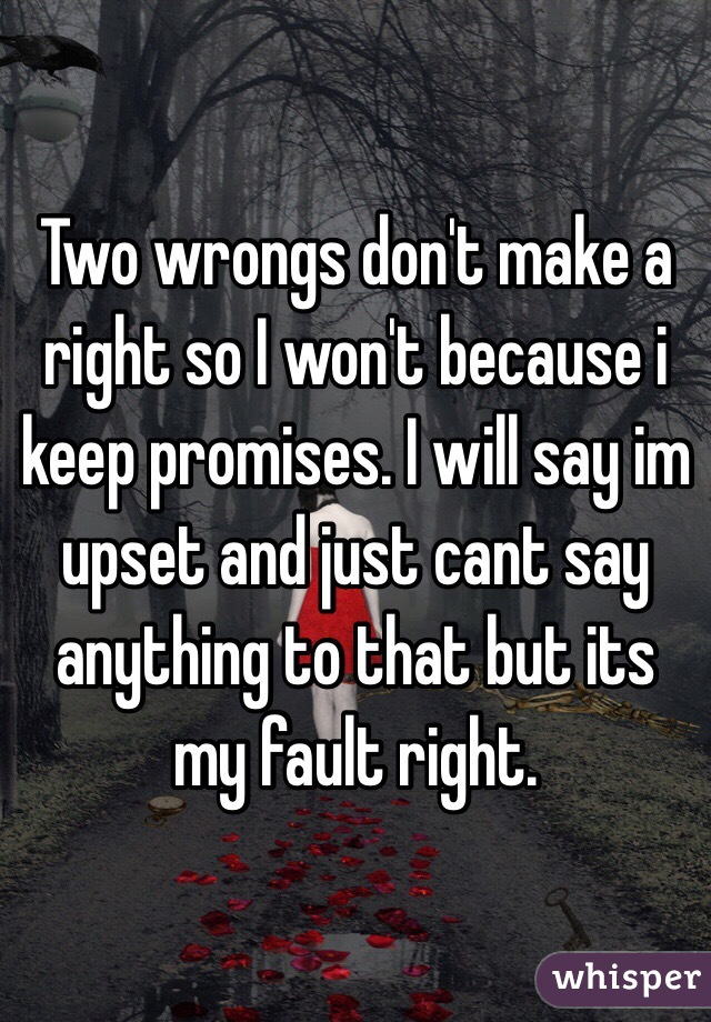 Two wrongs don't make a right so I won't because i keep promises. I will say im upset and just cant say anything to that but its my fault right.