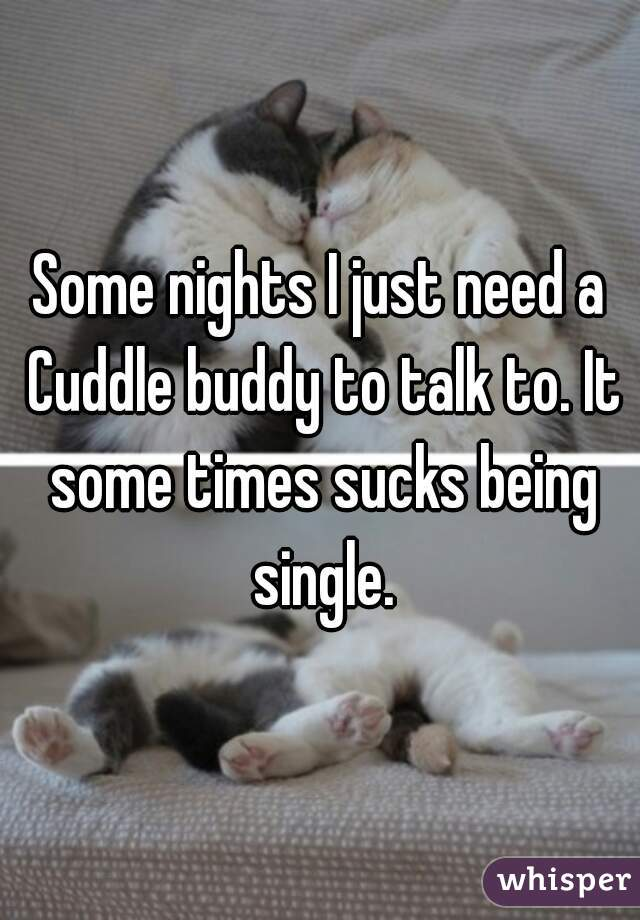 Some nights I just need a Cuddle buddy to talk to. It some times sucks being single.