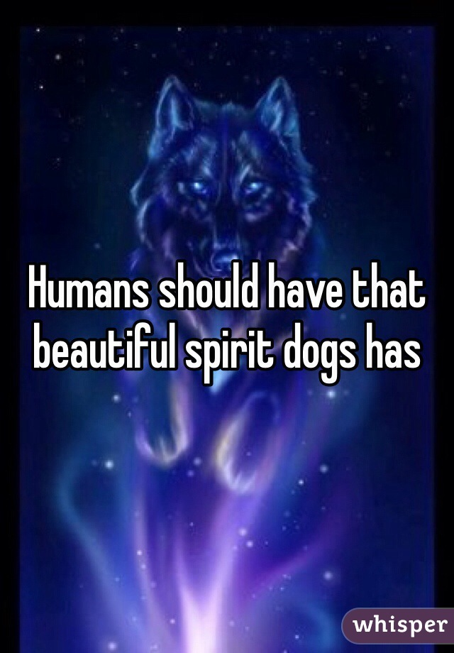 Humans should have that beautiful spirit dogs has