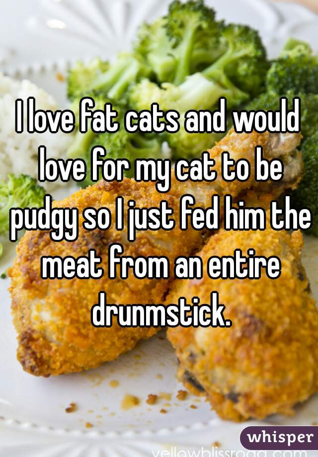 I love fat cats and would love for my cat to be pudgy so I just fed him the meat from an entire drunmstick.