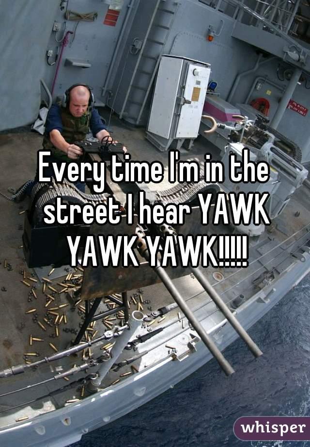 Every time I'm in the street I hear YAWK YAWK YAWK!!!!!