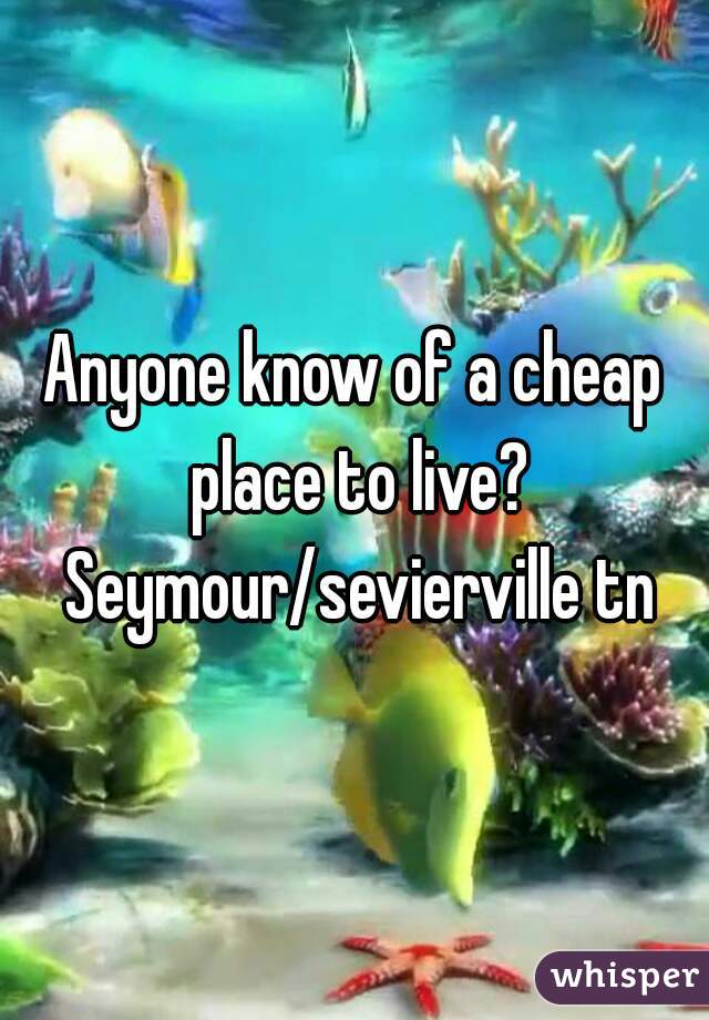 Anyone know of a cheap place to live? Seymour/sevierville tn