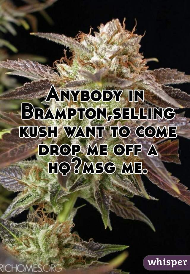 Anybody in Brampton,selling kush want to come drop me off a hq?msg me.