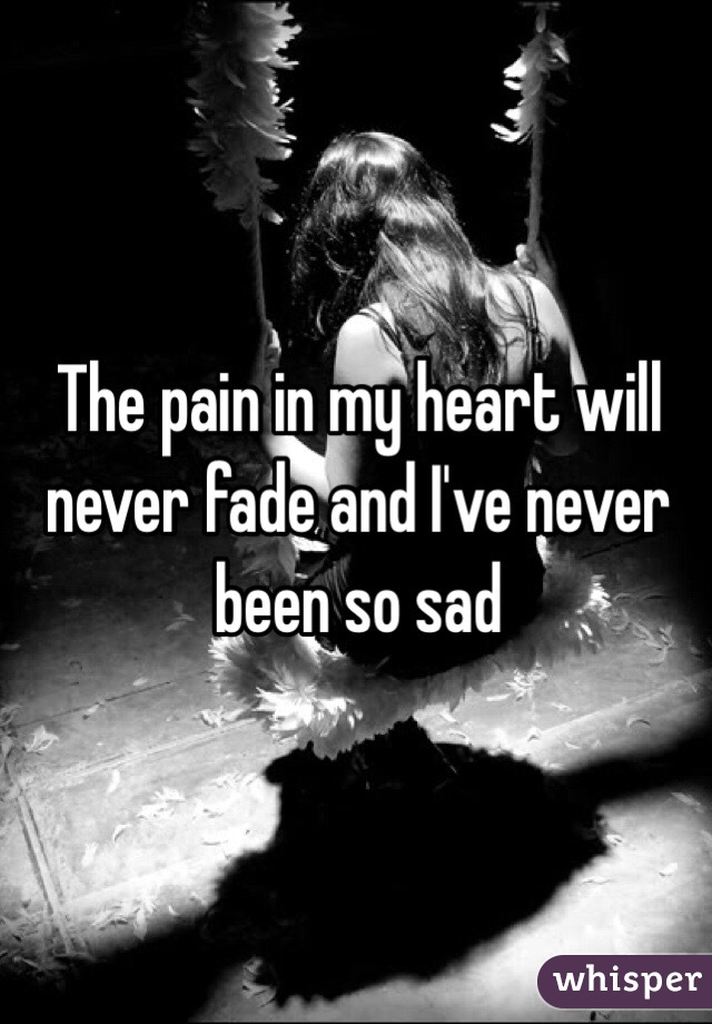 The pain in my heart will never fade and I've never been so sad