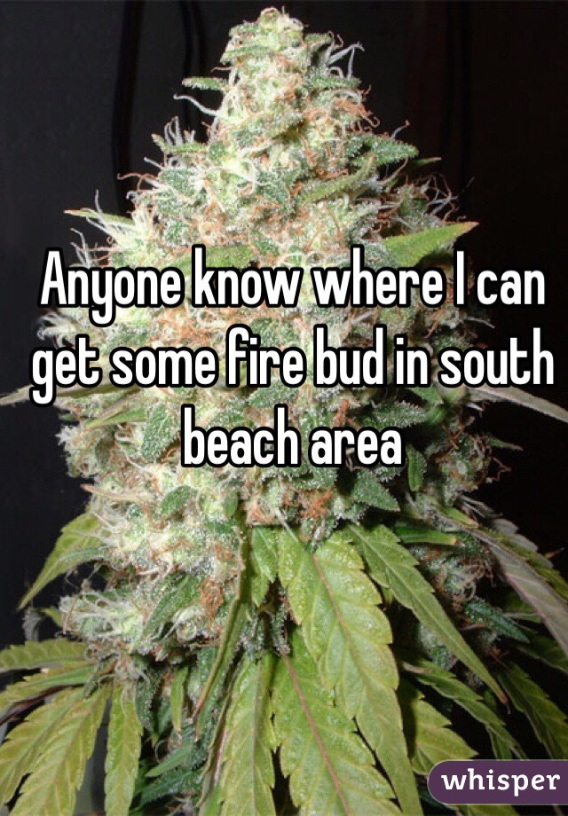 Anyone know where I can get some fire bud in south beach area