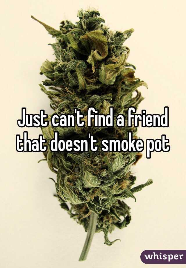 Just can't find a friend that doesn't smoke pot