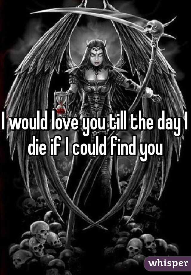 I would love you till the day I die if I could find you