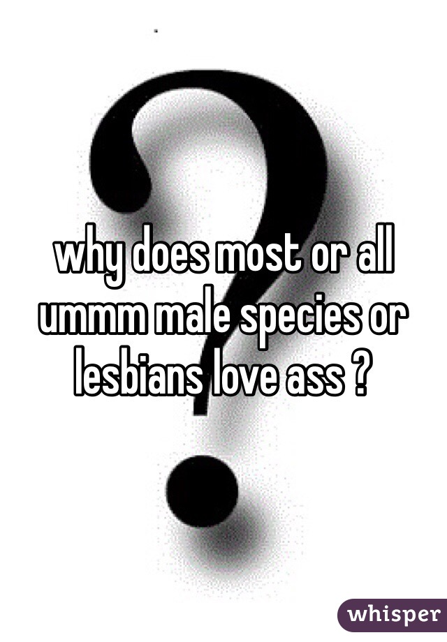 why does most or all ummm male species or lesbians love ass ?