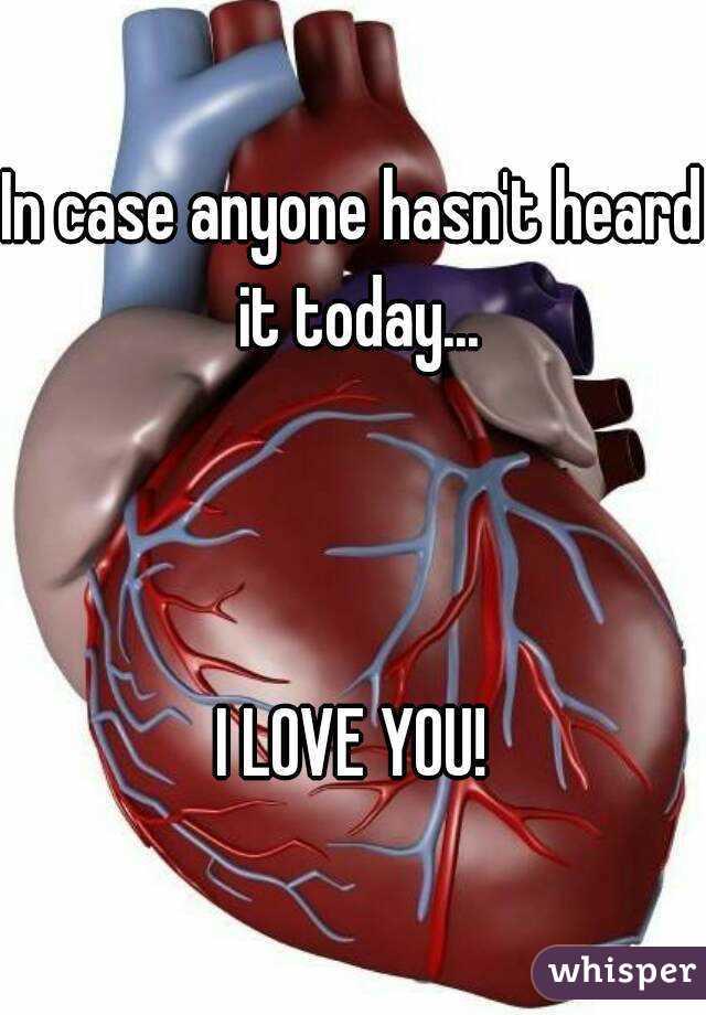 In case anyone hasn't heard it today...    I LOVE YOU!