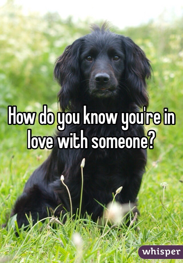 How do you know you're in love with someone?
