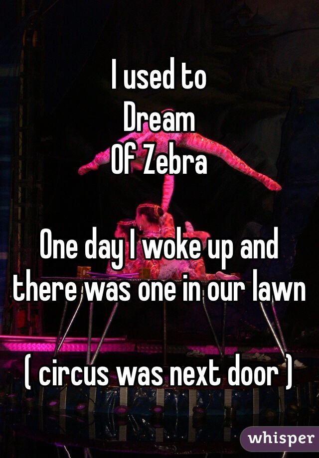 I used to Dream Of Zebra   One day I woke up and there was one in our lawn   ( circus was next door )