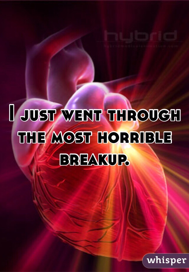 I just went through the most horrible breakup.