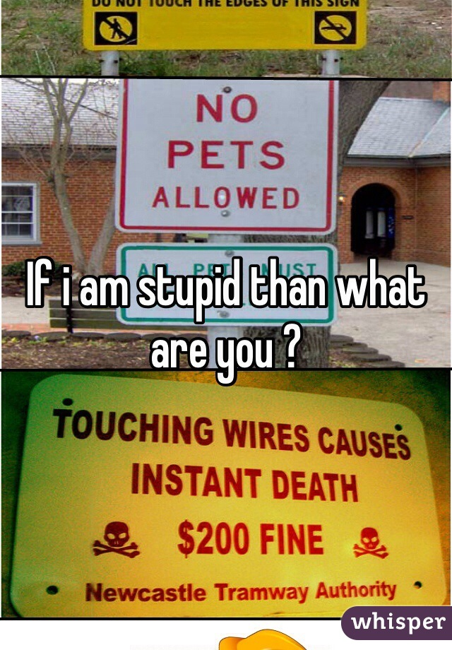 If i am stupid than what are you ?