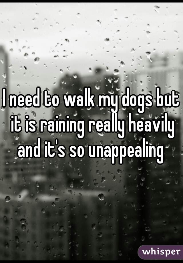I need to walk my dogs but it is raining really heavily and it's so unappealing