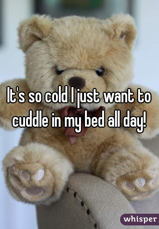 It's so cold I just want to cuddle in my bed all day!