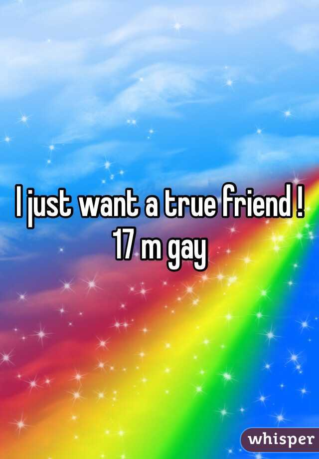 I just want a true friend !  17 m gay