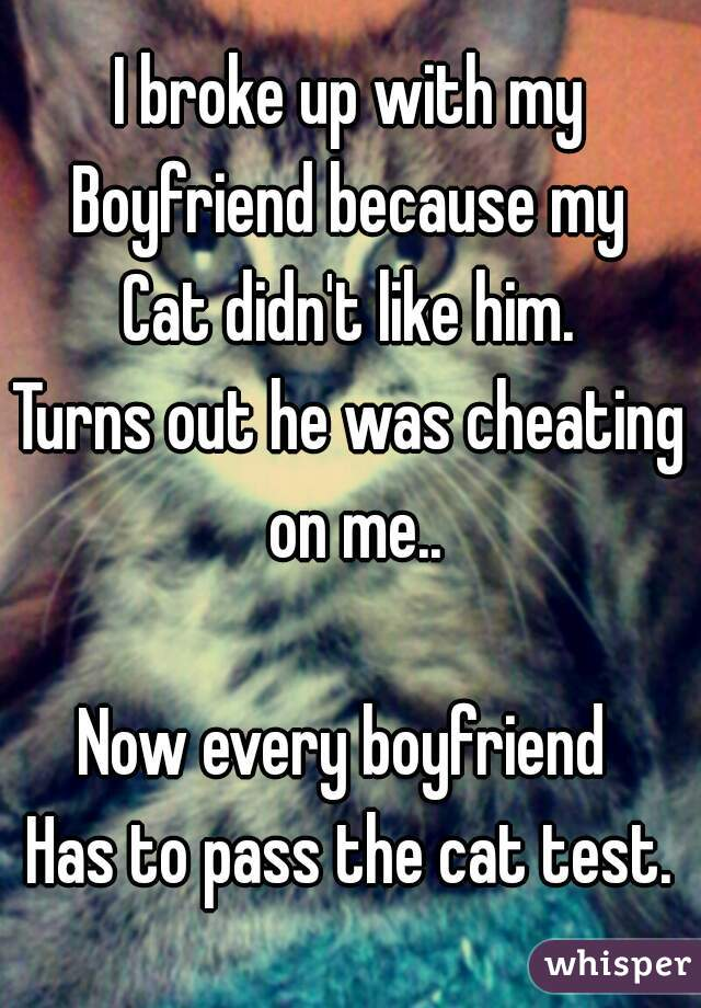 I broke up with my Boyfriend because my Cat didn't like him. Turns out he was cheating on me..  Now every boyfriend  Has to pass the cat test.