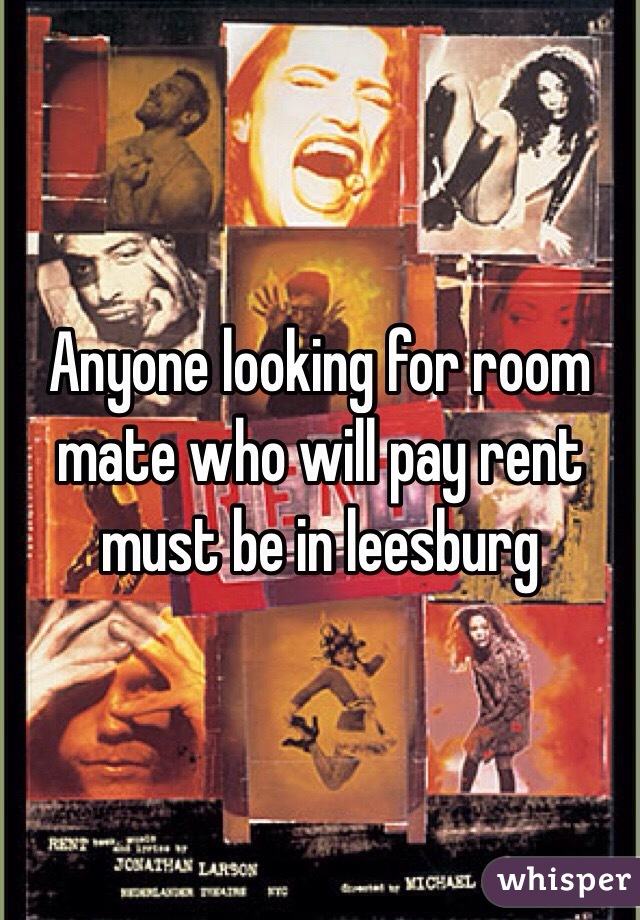 Anyone looking for room mate who will pay rent must be in leesburg