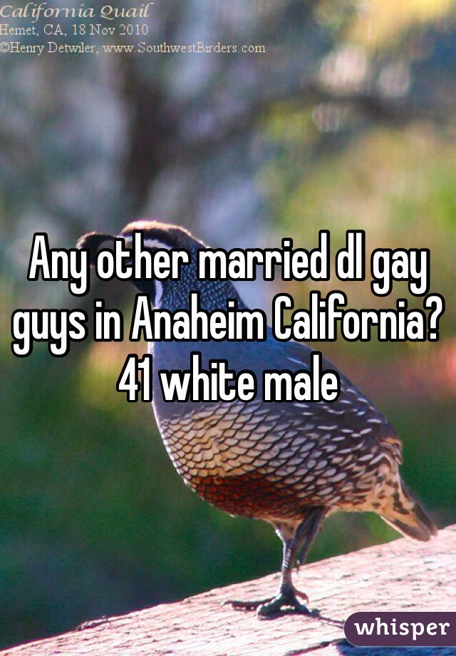 Any other married dl gay guys in Anaheim California? 41 white male