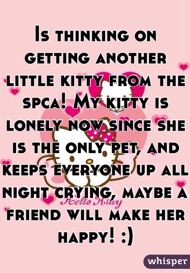 Is thinking on getting another little kitty from the spca! My kitty is lonely now since she is the only pet, and keeps everyone up all night crying, maybe a friend will make her happy! :)