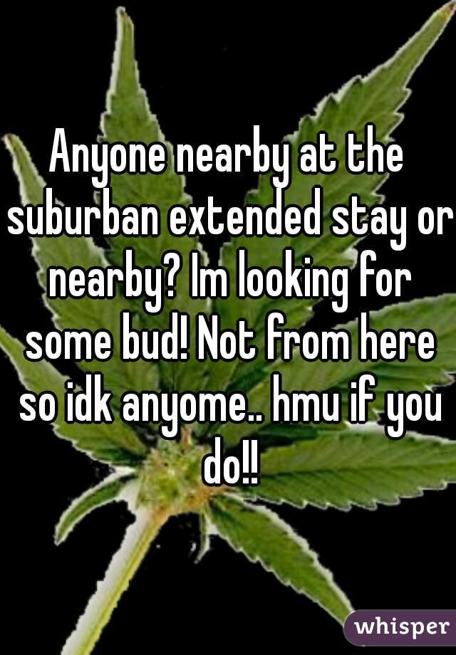 Anyone nearby at the suburban extended stay or nearby? Im looking for some bud! Not from here so idk anyome.. hmu if you do!!