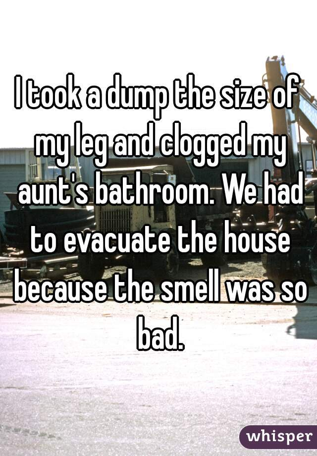 I took a dump the size of my leg and clogged my aunt's bathroom. We had to evacuate the house because the smell was so bad.