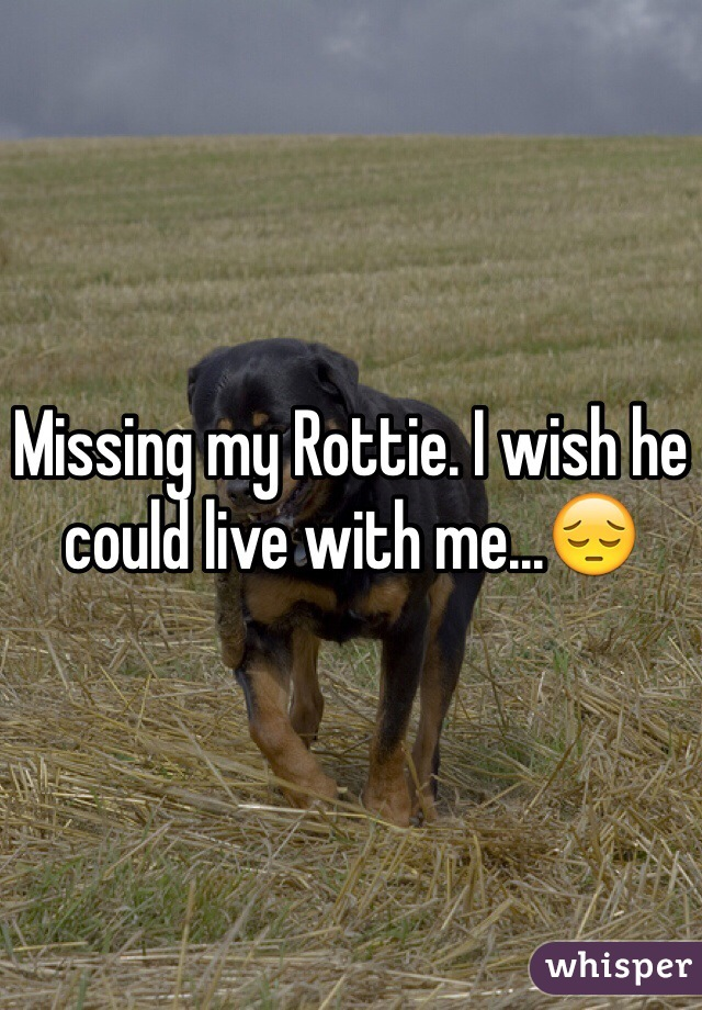 Missing my Rottie. I wish he could live with me...😔