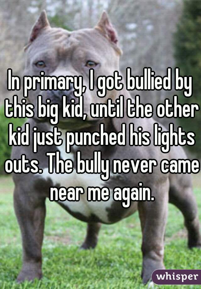 In primary, I got bullied by this big kid, until the other kid just punched his lights outs. The bully never came near me again.