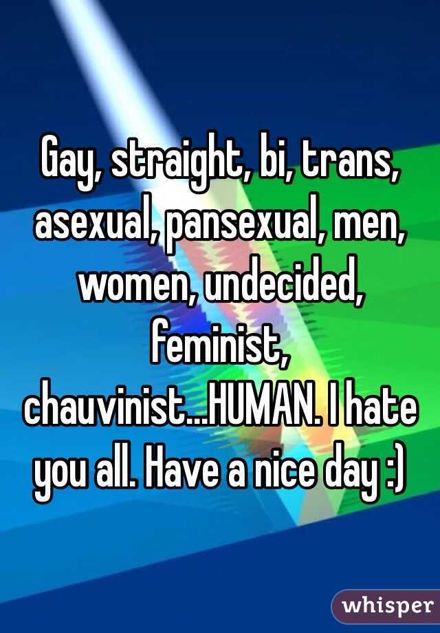 Gay, straight, bi, trans, asexual, pansexual, men, women, undecided, feminist, chauvinist...HUMAN. I hate you all. Have a nice day :)