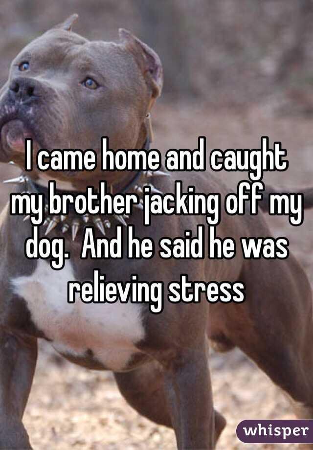 Jacking off my dog