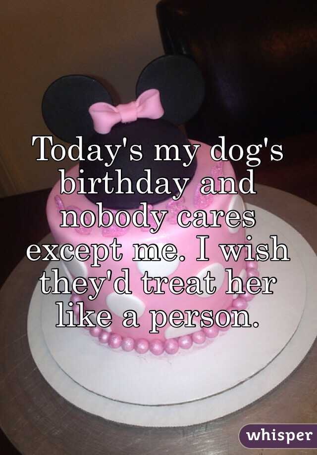 Today's my dog's birthday and nobody cares except me. I wish they'd treat her like a person.