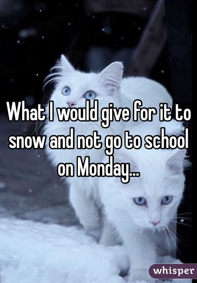 What I would give for it to snow and not go to school on Monday...