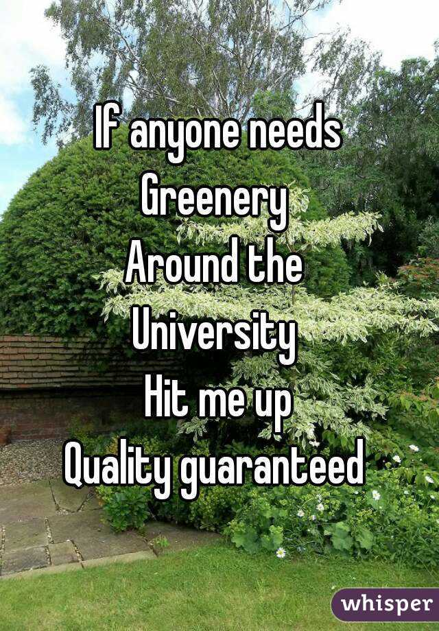 If anyone needs Greenery  Around the  University  Hit me up Quality guaranteed