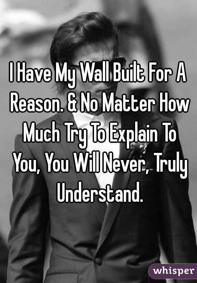 I Have My Wall Built For A Reason. & No Matter How Much Try To Explain To You, You Will Never, Truly Understand.