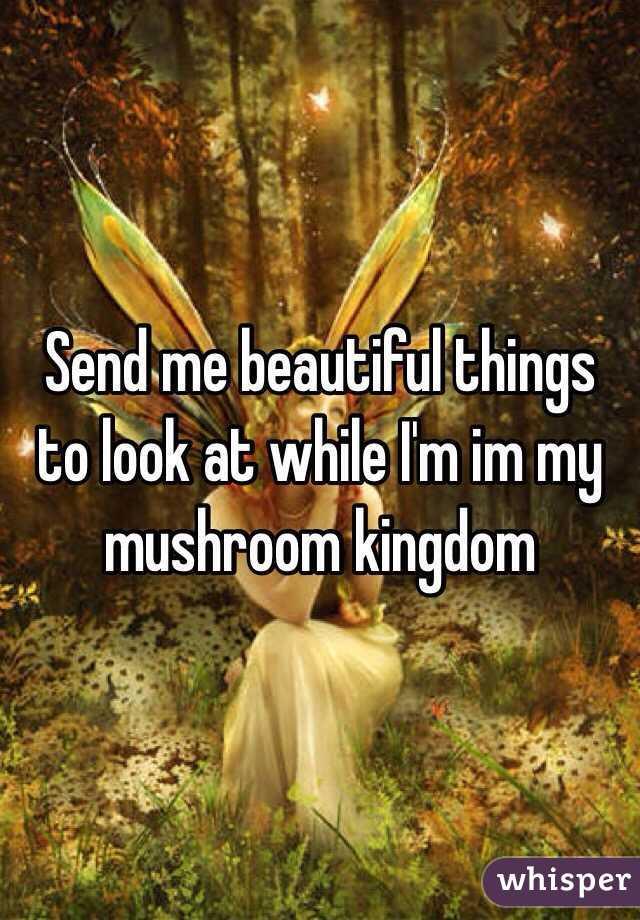 Send me beautiful things to look at while I'm im my mushroom kingdom