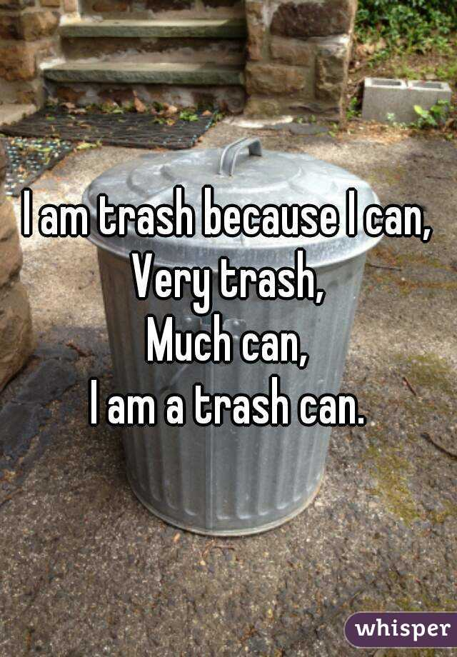 I am trash because I can, Very trash, Much can, I am a trash can.
