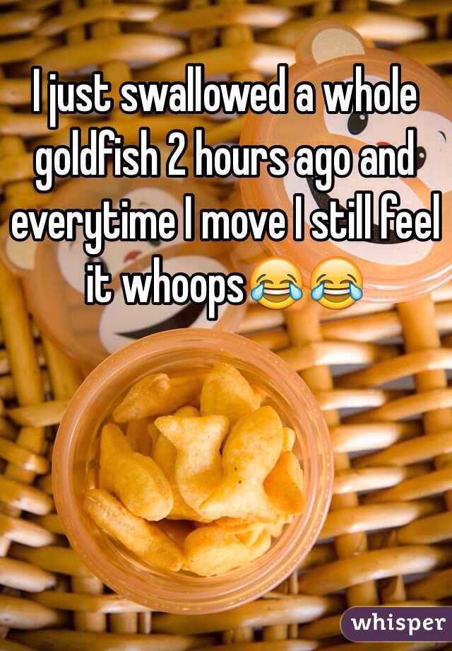 I just swallowed a whole goldfish 2 hours ago and everytime I move I still feel it whoops😂😂
